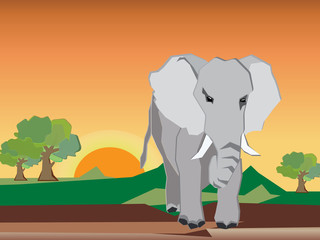 The elephant is stand alone in the forest