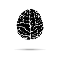 Brain icon. On the white background. Vector illustration.