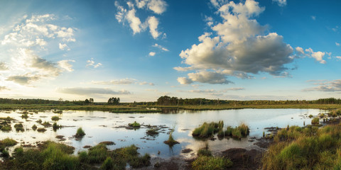 Poster Blauwe jeans Summer sunset panorama landscape over wetlands