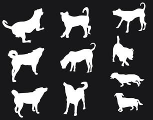 ten white silhouettes of dog