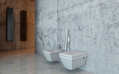 Toilet and bidet in an upscale restroom