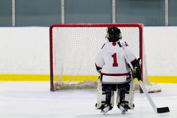 Hockey goalie skating the net