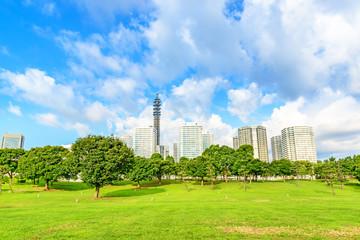 Landscape grass prospects Yokohama buildings of landmark