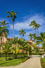 Amazing view of caribbean resort with exotil tall palm trees