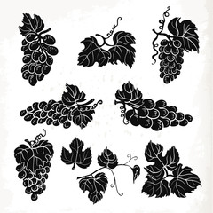 Collection of silhouette grapes, leaves and branches