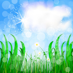 Natural background, green grass and blue sky