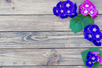 wooden background with flowers