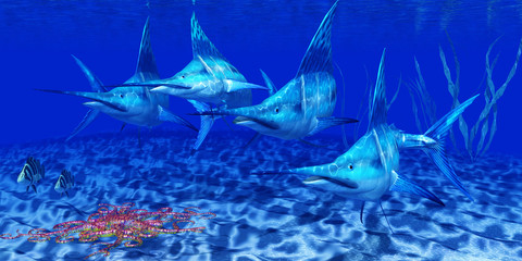 Blue Marlin Predators