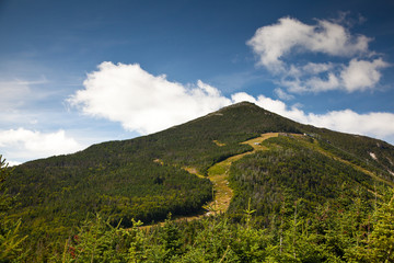 Wall Mural - Adirondack Whiteface mountain forests trail  landscape