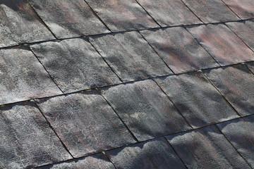 銅葺きの屋根