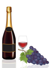Bottle wine,Glass wine and grape,Vector illustration