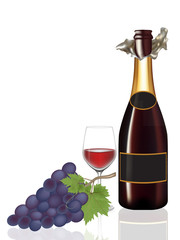 Open bottle wine,Glass wine and grape,Vector illustration