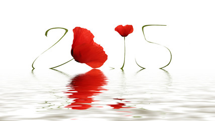 Happy new year (Poppy)