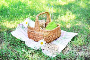 Aluminium Prints Picnic Tasty snack in basket