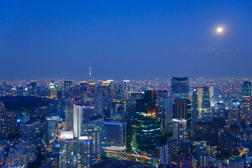 Tokyo in the twilight, direction to the Shimbashi, Ginza, Asakus