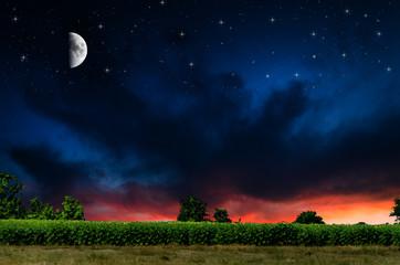 Night background.