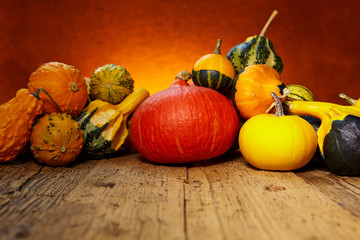 Autumn nature concept. Pumpkin on wooden table.