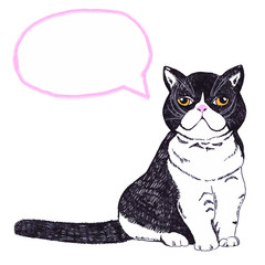 Hand Drawn Cute Cat with speech bubble