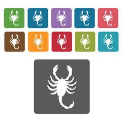 Scorpion icon. Insect icon set. Rectangle colourful 12 buttons.