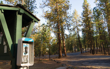 Pay Phone Booth Tone Dial Wooded Campground State Forest