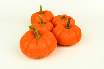 Seasonal Mini Pumpkins