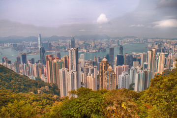Panoramic view of Hong Kong from Victoria Peak on a sunny aftern