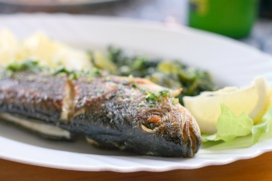 The European seabass, Dicentrarchus labrax grilled