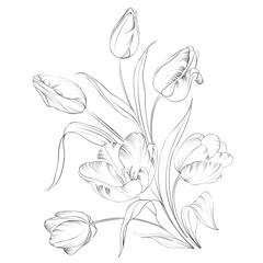 PrintHand drawn tulips.