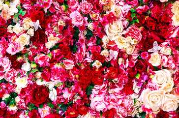 Floral background with red and white roses