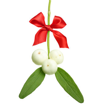 Mistletoe branch with red ribbon