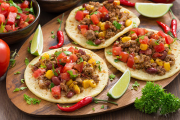 Mexican cuisine-tortillas with chili con carne and tomato salsa