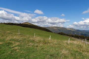 paysage des Vosges