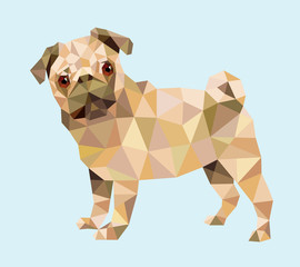 Pug dog animal triangle low polygon style