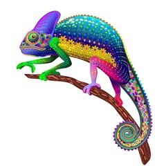 Printed kitchen splashbacks Draw Chameleon Fantasy Rainbow Colors