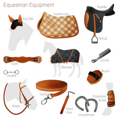 Set of equestrian equipment. Vector.