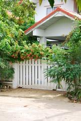 door and garden front of the house