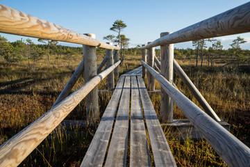 wooden footpath on the bog
