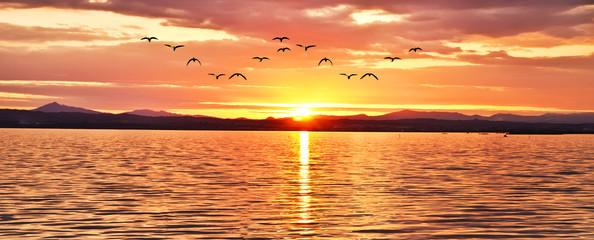 amanecer radiante sobre el mar