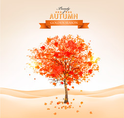Wall Mural - Autumn tree with orange leaves. Vector.