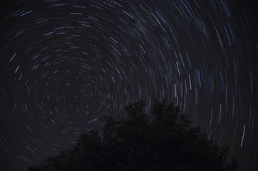 Startrails with Polaris in Italy