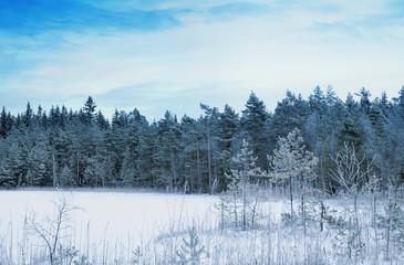 Beautiful nature background image vintage editing style
