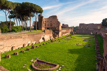 Fototapete - View of the Stadium of Domitian on the Palatine Hill in Rome