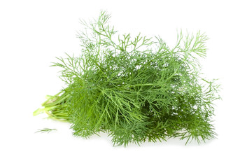 The Bundle of Fresh Dill