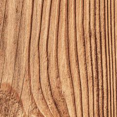 Pine Wood Texture - Illustration