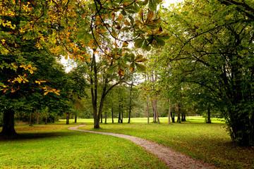 Herbstlicher Weg Herbst Park Weg