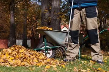 Man raking the leaves