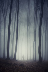man walking on path through spooky dark forest