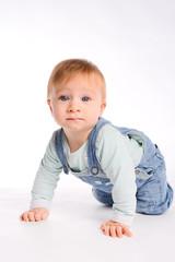 isolated studio shot white background of lovely toddler baby boy