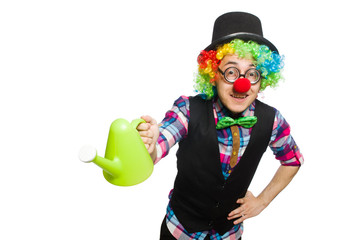 Wall Mural - Clown isolated on the white background