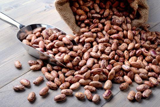Pinto beans - fagioli borlotti